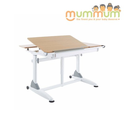 Kid2youth G6+S ERGONOMIC DESK (White, wooden)