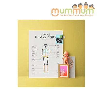 Squared Human Body