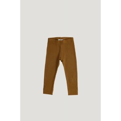 Jamie Kay Modal Cotton Essential Legging Golden