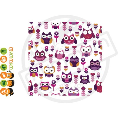 Little Shades Stick On Decals - Owls Of Fun