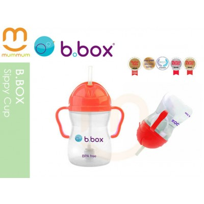 bbox Sippy Cup Watermelon