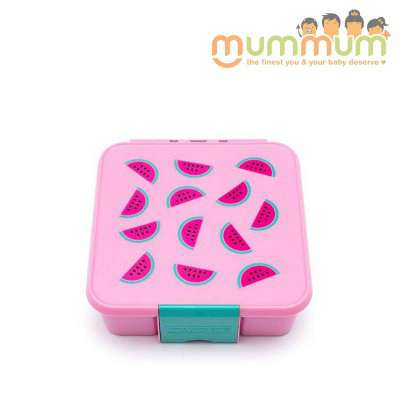 Little lunch box co  3 watermelon
